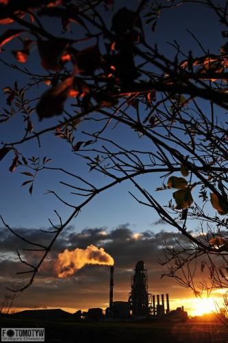 Cementownia Chełm jesienią