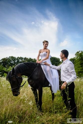 Sesja plenerowa na koniach